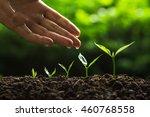 plant tree | Shutterstock . vector #460768558
