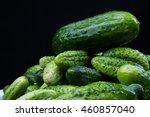 cucumber | Shutterstock . vector #460857040