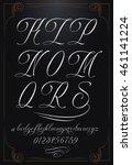 hand drawn vector calligraphy... | Shutterstock .eps vector #461141224
