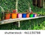 The Colorful Plastic Plant Pot...