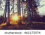 sunrise | Shutterstock . vector #461172574