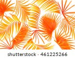leaves of palm tree on white... | Shutterstock . vector #461225266