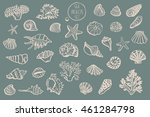 shell undersea world outline...   Shutterstock . vector #461284798