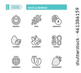 flat symbols about nuts  ... | Shutterstock .eps vector #461386159