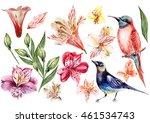 set of alstroemeria and birds.... | Shutterstock . vector #461534743