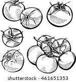 set of hand drawn tomato....   Shutterstock .eps vector #461651353