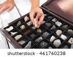 rocks and minerals. casket... | Shutterstock . vector #461760238