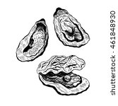 oysters vintage vector set ...