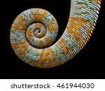chameleon tail | Shutterstock . vector #461944030
