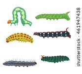 Caterpillars Set Vector...