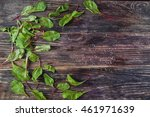 green leaves on the table | Shutterstock . vector #461971639