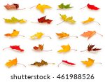 Collection Of Falling Autumn...