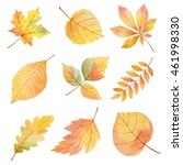 watercolor set autumn leaves on ... | Shutterstock . vector #461998330