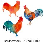 rooster. isolated. year of the... | Shutterstock . vector #462013480