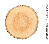wood cross section tree rings... | Shutterstock . vector #462101140