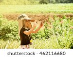 children are walking beautiful... | Shutterstock . vector #462116680