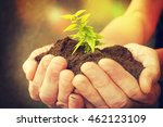 hand and plant | Shutterstock . vector #462123109