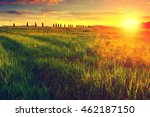 early morning at meadow  poplar ... | Shutterstock . vector #462187150