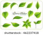 eco icon green leaf vector... | Shutterstock .eps vector #462237418