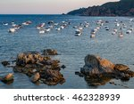 boats in the ocean near de... | Shutterstock . vector #462328939