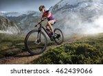 sport. mountain bike cyclist... | Shutterstock . vector #462439066