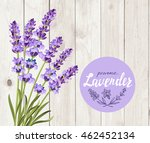 vector bunch of lavender on... | Shutterstock .eps vector #462452134