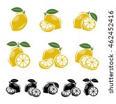lemon set. vector | Shutterstock .eps vector #462452416