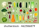 vector illustration of healthy... | Shutterstock .eps vector #462586879