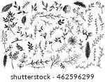 Hand Drawn vintage floral elements. Set of decorative branches and leaves. Vintage vector design elements.Ink illustration.