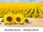 Flowers And Seed Of Sunflower...