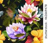 Water Lily  Lotus Flowers ...