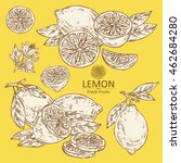 collection of lemon . hand drawn | Shutterstock .eps vector #462684280
