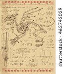 set of drawings with skeleton... | Shutterstock .eps vector #462743029
