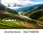 natural colors of terraced rice ... | Shutterstock . vector #462748858