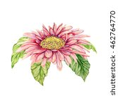 Watercolor Gerbera Flower. Han...