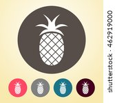 pineapple icon in round shape.  | Shutterstock .eps vector #462919000