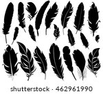 isolated feathers silhouette | Shutterstock .eps vector #462961990