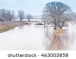 spring flooding. steppe river | Shutterstock . vector #463003858