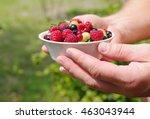 fresh juicy berries ... | Shutterstock . vector #463043944
