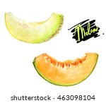 melon watercolor illustration.... | Shutterstock . vector #463098104