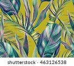 tropical colorful background... | Shutterstock . vector #463126538