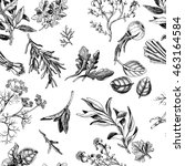 vector background sketch herbs. ... | Shutterstock .eps vector #463164584