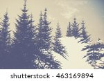 abstract double exposure... | Shutterstock . vector #463169894