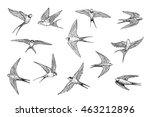 Swallow Bird Line Set