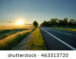 an asphalt road along the corn... | Shutterstock . vector #463313720