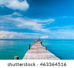 path filled with love... | Shutterstock . vector #463364516