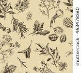 vector background sketch herbs. ... | Shutterstock .eps vector #463478360
