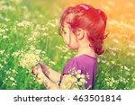 little girl picking flowers in... | Shutterstock . vector #463501814