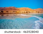 dead sea seashore with palm... | Shutterstock . vector #463528040