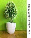 beautiful ornamental plants on  ... | Shutterstock . vector #463563209